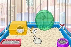 Petz - Hamsterz Life 2